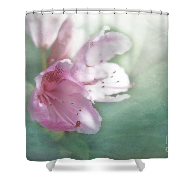 Bloom Shower Curtain featuring the photograph Flowering In The Green Mist by Lali Kacharava