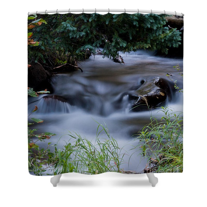 Nature Shower Curtain featuring the photograph Fluid Beauty by Steven Reed