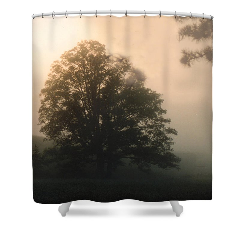 Sunrise Shower Curtain featuring the photograph Foggy Morning by Norman Johnson