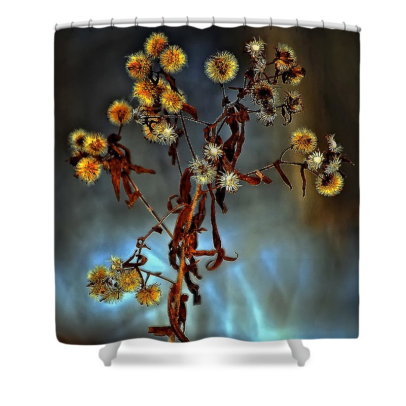 Weed Shower Curtain featuring the photograph For You by Steve Harrington