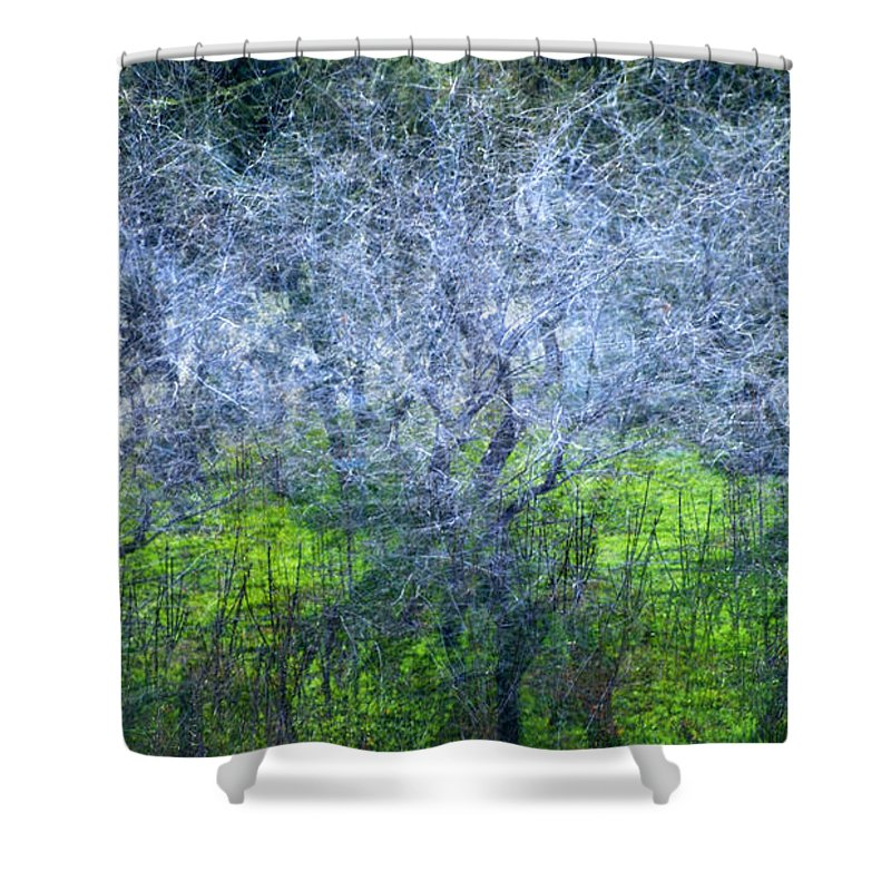 Bosques Shower Curtain featuring the photograph Forest City by Guido Montanes Castillo