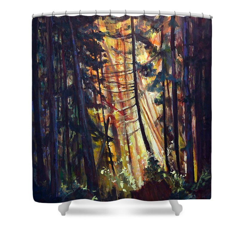 Trees Shower Curtain featuring the painting Forest Light by Nanci Cook