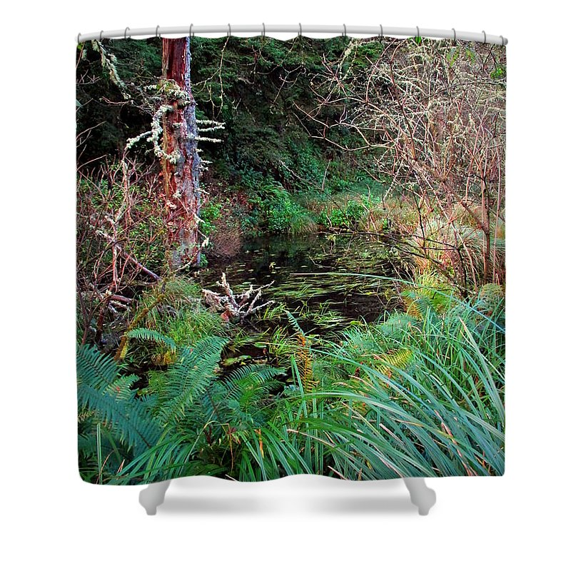 Forest Shower Curtain featuring the photograph Forest Wetlands II by Joyce Dickens