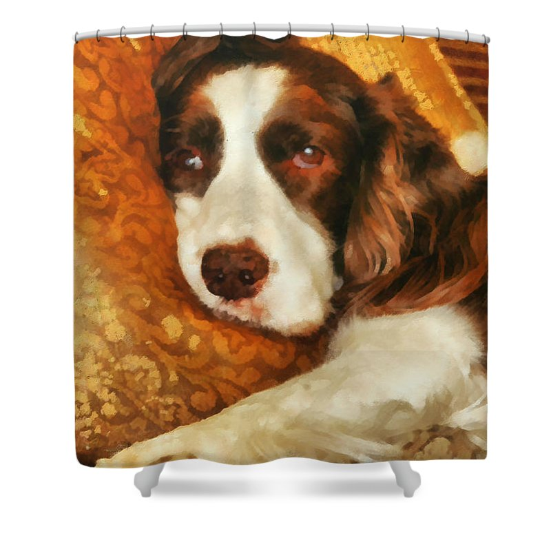 Springerspaniel Shower Curtain featuring the painting Freckles by Janice MacLellan