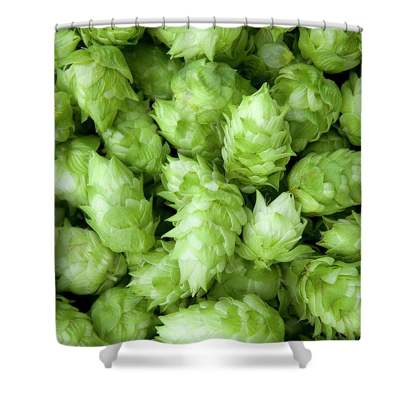 Alcohol Shower Curtain featuring the photograph Fresh Hops by Licreate