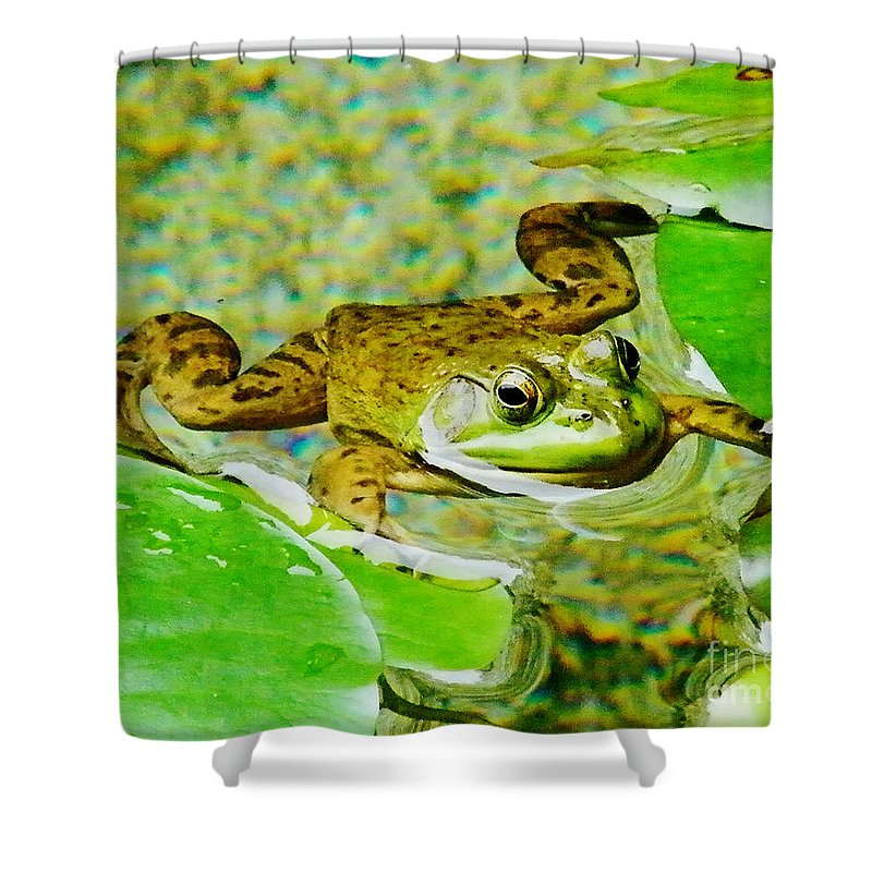 Frog Shower Curtain featuring the photograph Frog Abby Aldrich Rockefeller Garden by Lizi Beard-Ward