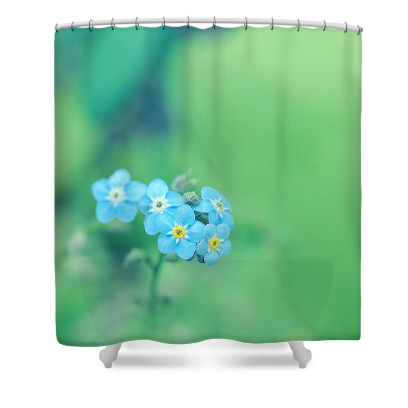 Forget-me-not Shower Curtain featuring the photograph Froggy by Rachel Mirror