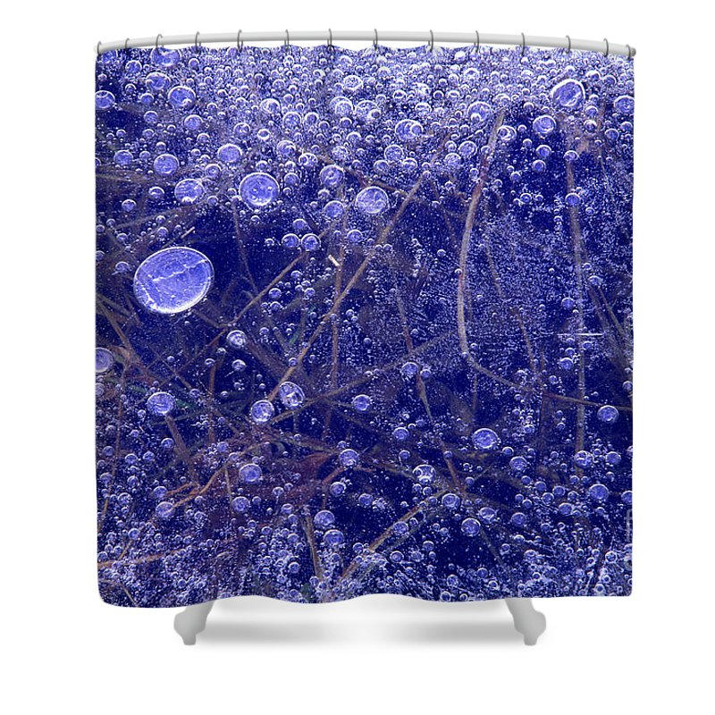 North America Shower Curtain featuring the photograph Frozen Bubbles In The Merced River Yellowstone Natioinal Park by Dave Welling