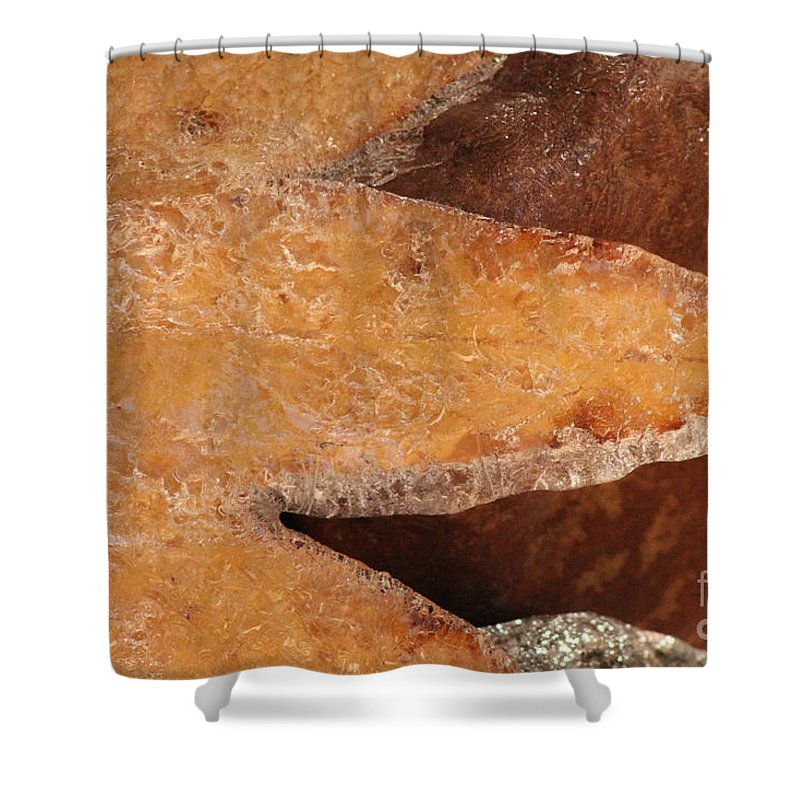 Shower Curtain featuring the photograph Frozen In Time by Diane Greco-Lesser