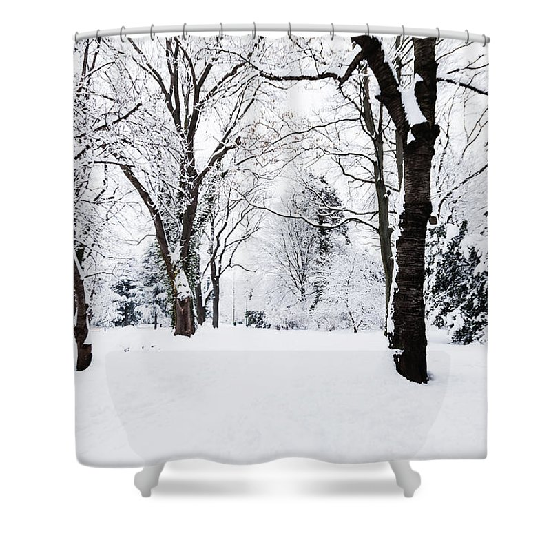 Snow Shower Curtain featuring the photograph Frozen Tree On A Snow Field by Lightkey