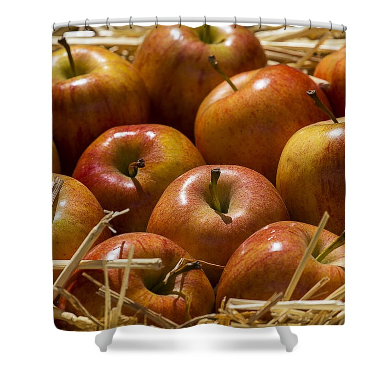Fuji Apples Shower Curtain featuring the photograph Fuji Apples by Garry Gay