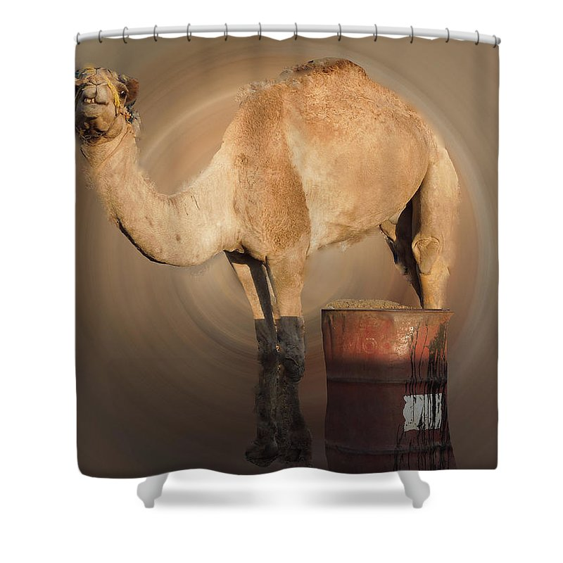 Colette Shower Curtain featuring the photograph Funny Beduin Camel Talk by Colette V Hera Guggenheim