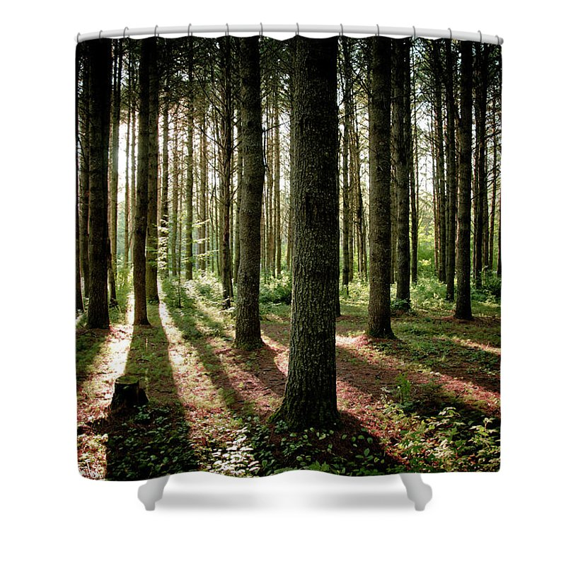 Tranquility Shower Curtain featuring the photograph Galarneau by Guillaume Seguin