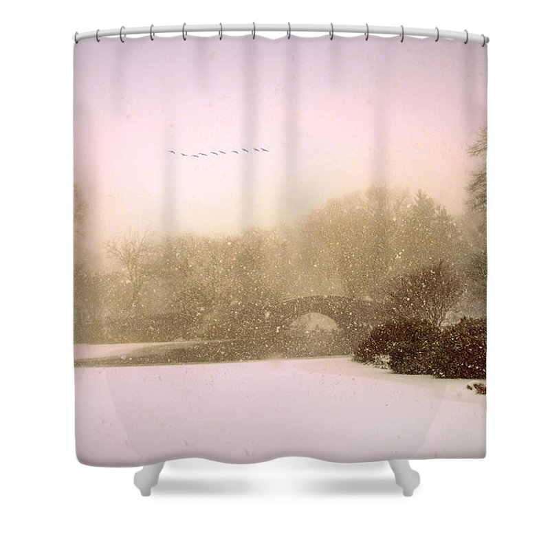 Gapstow Blizzard Shower Curtain for Sale by Jessica Jenney