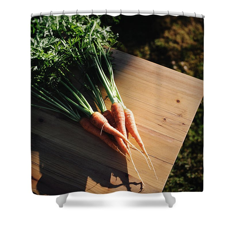 Five Objects Shower Curtain featuring the photograph Garden Carrots On Sunny Stool by Danielle D. Hughson