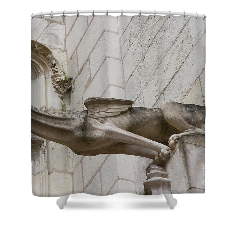 Gargole Shower Curtain featuring the photograph Gargoyle Cathedral Tours by Christiane Schulze Art And Photography