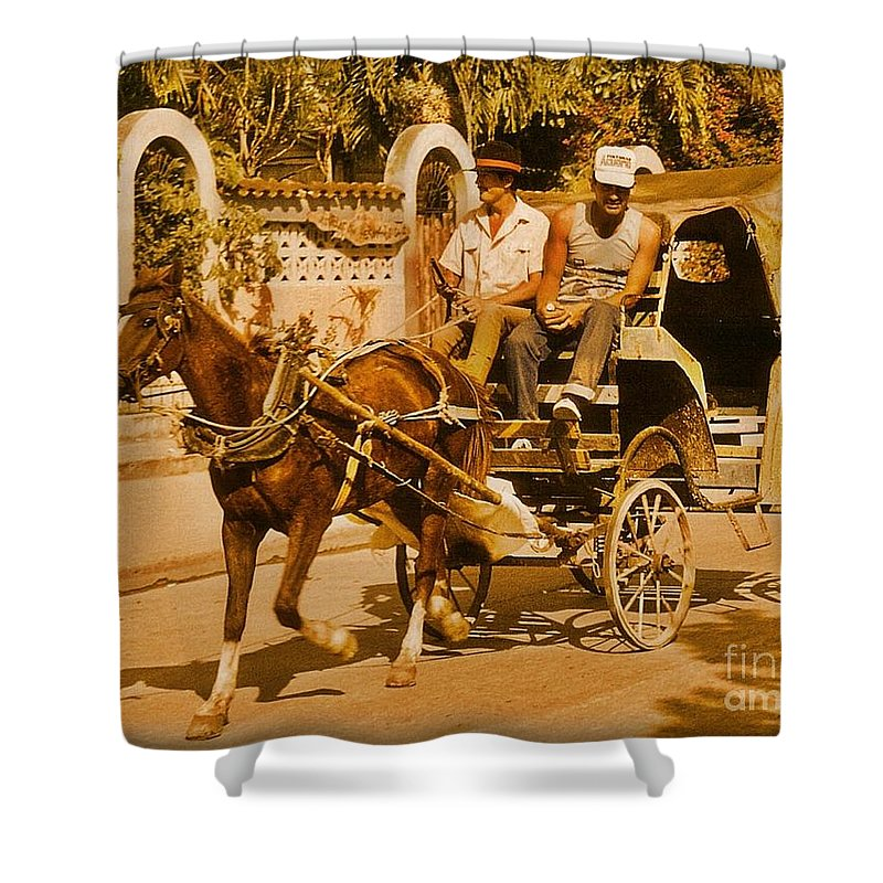 Horses Shower Curtain featuring the photograph Gee Haw by John Malone