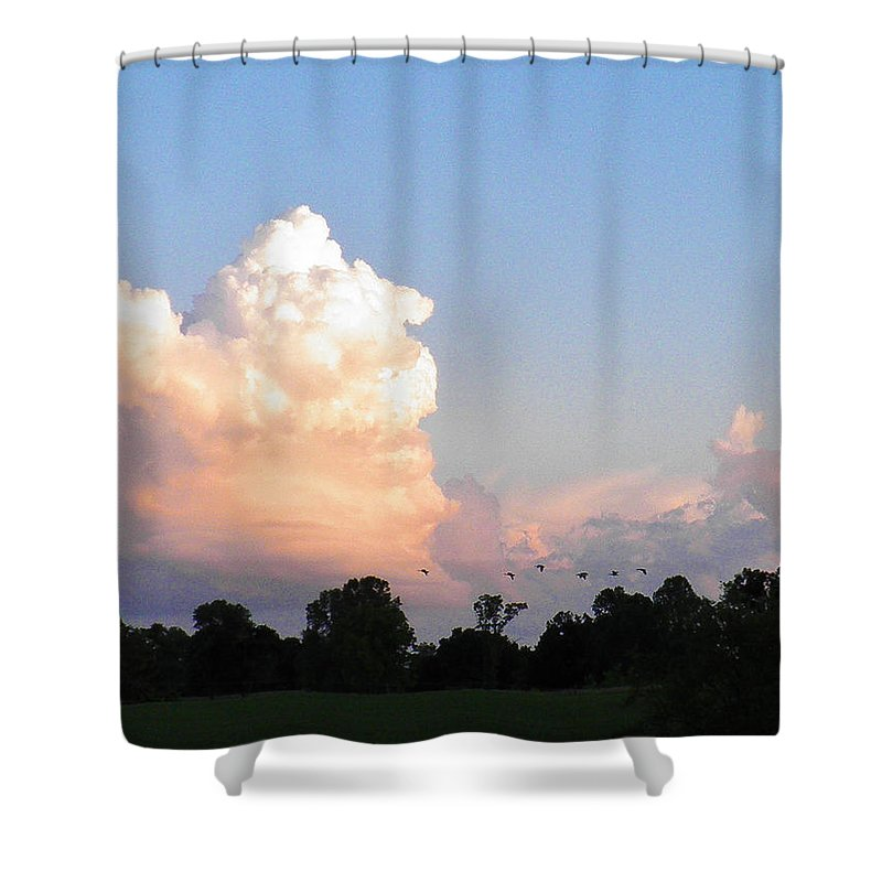 Geese Shower Curtain featuring the photograph Geese In The Evening by Nick Kirby