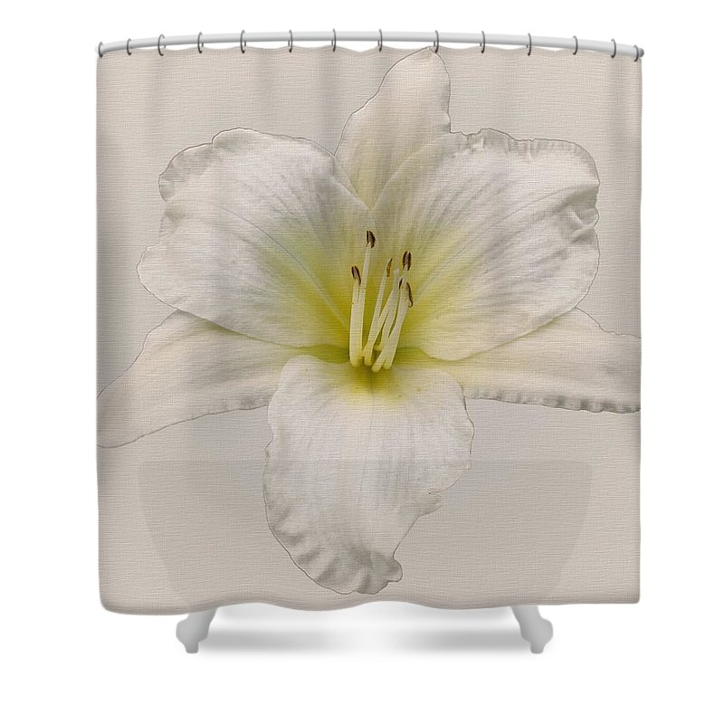 Gentle Shepherd Daylily Shower Curtain featuring the photograph Gentle Shepherd White by MTBobbins Photography
