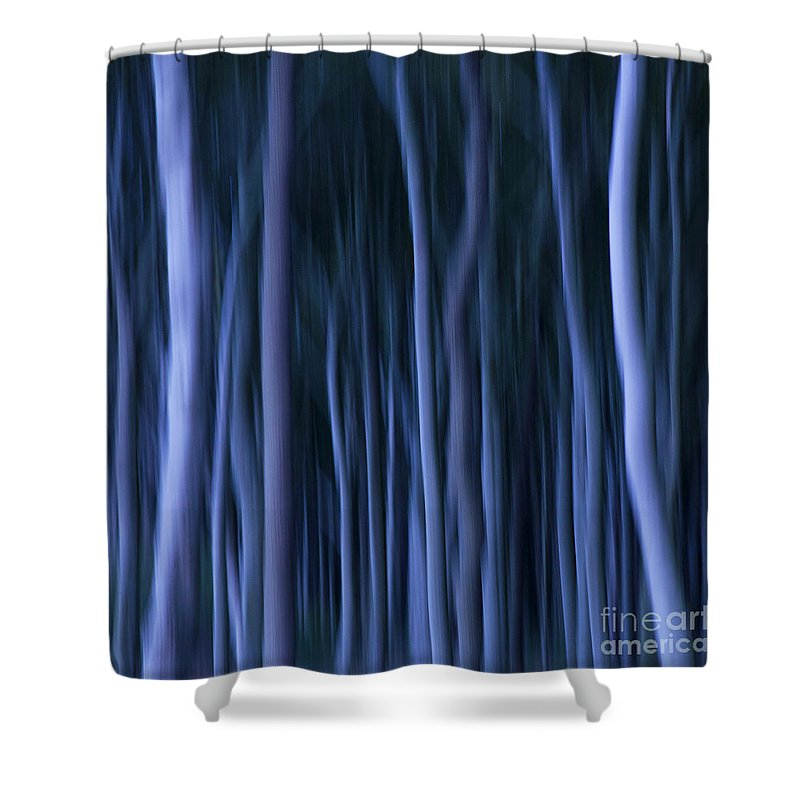 Abstract Shower Curtain featuring the photograph Ghost Forest by Heiko Koehrer-Wagner