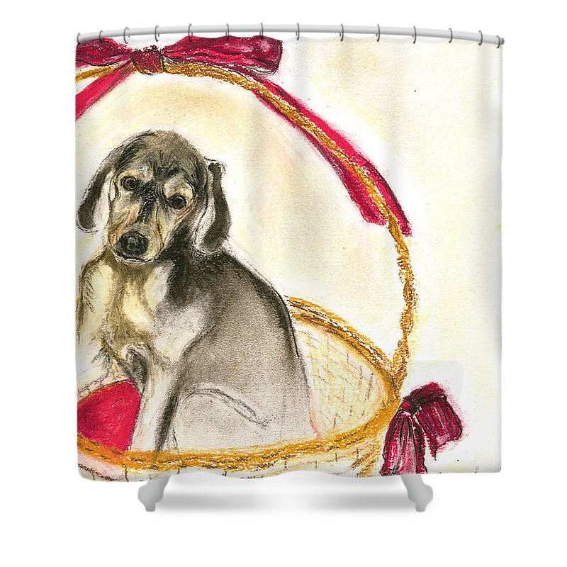 Dog Shower Curtain featuring the drawing Gift Basket by Cori Solomon