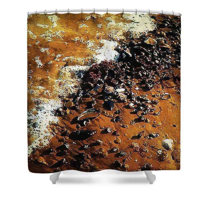 Landscape Shower Curtain featuring the painting Gifts From The Sea by RC DeWinter