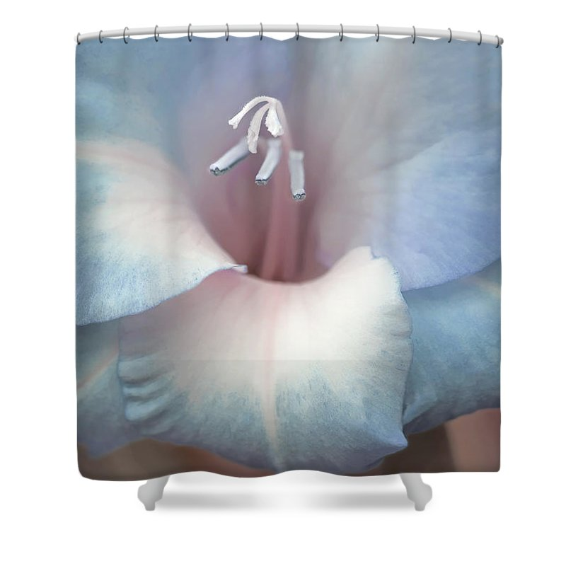 Gladiola Shower Curtain featuring the photograph Gladiola Flower Soft Blues by Jennie Marie Schell