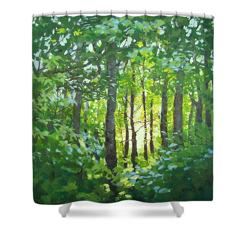Landscape Shower Curtain featuring the painting Glow by Karen Ilari