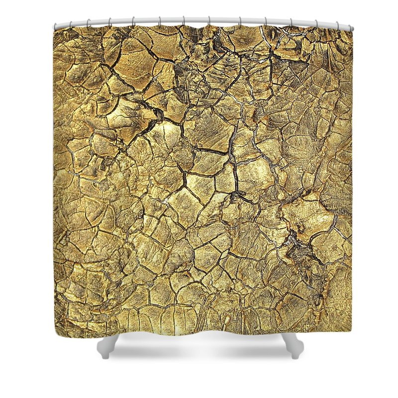 Paintings Shower Curtain featuring the painting Gold Fever 1 by Alan Casadei