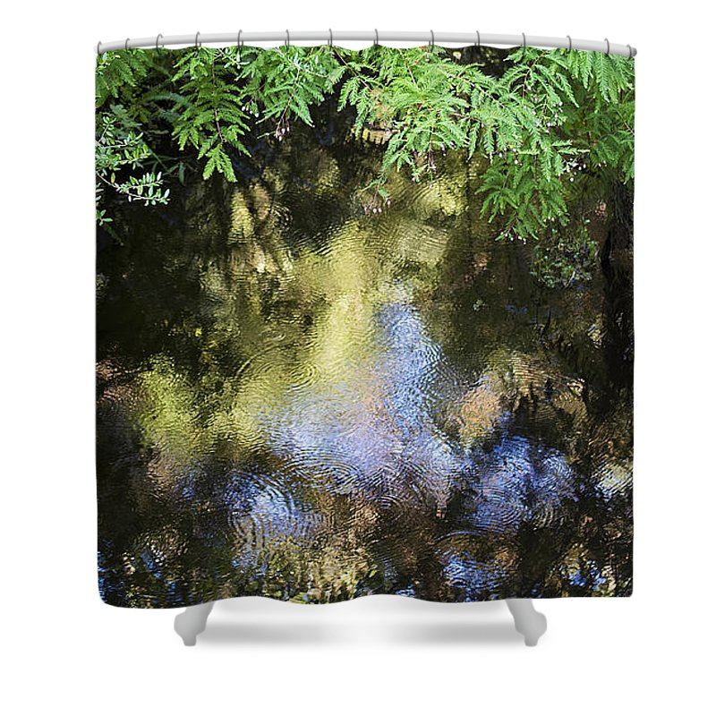 Pond Shower Curtain featuring the photograph Golden Pond by Kenneth Albin