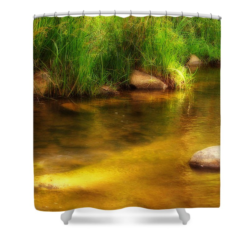 Pond Shower Curtain featuring the photograph Golden Reflections by Michelle Wrighton