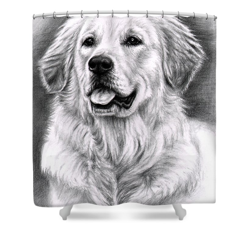 Dog Shower Curtain featuring the drawing Golden Retriever Spence by Nicole Zeug