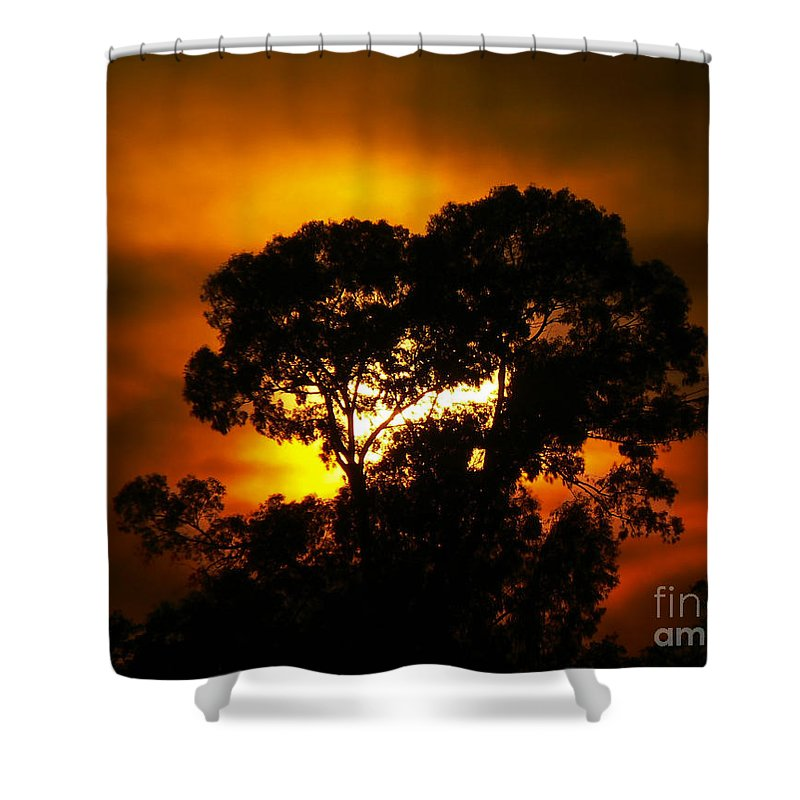 Hellas Shower Curtain featuring the photograph Golden Sunset... by Nina Stavlund
