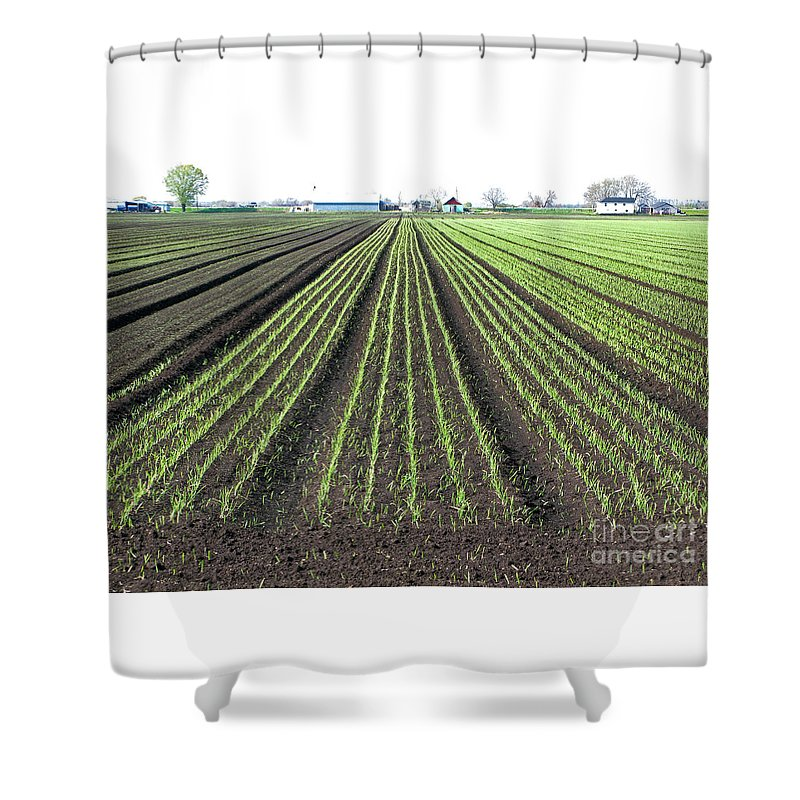 Farm Shower Curtain featuring the photograph Good Earth by Ann Horn