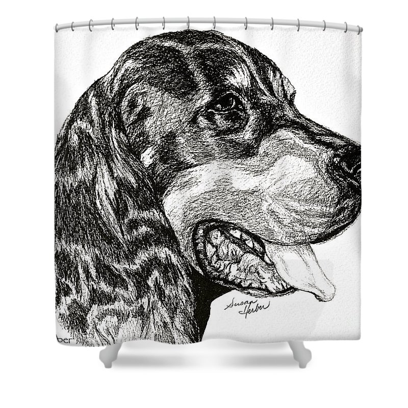 Dog Shower Curtain featuring the drawing Gordon Setter by Susan Herber