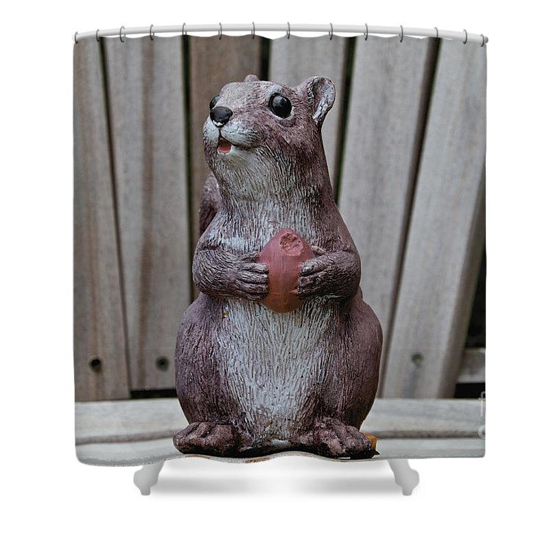 Yard Ornament Shower Curtain featuring the photograph Got Nuts by William Norton
