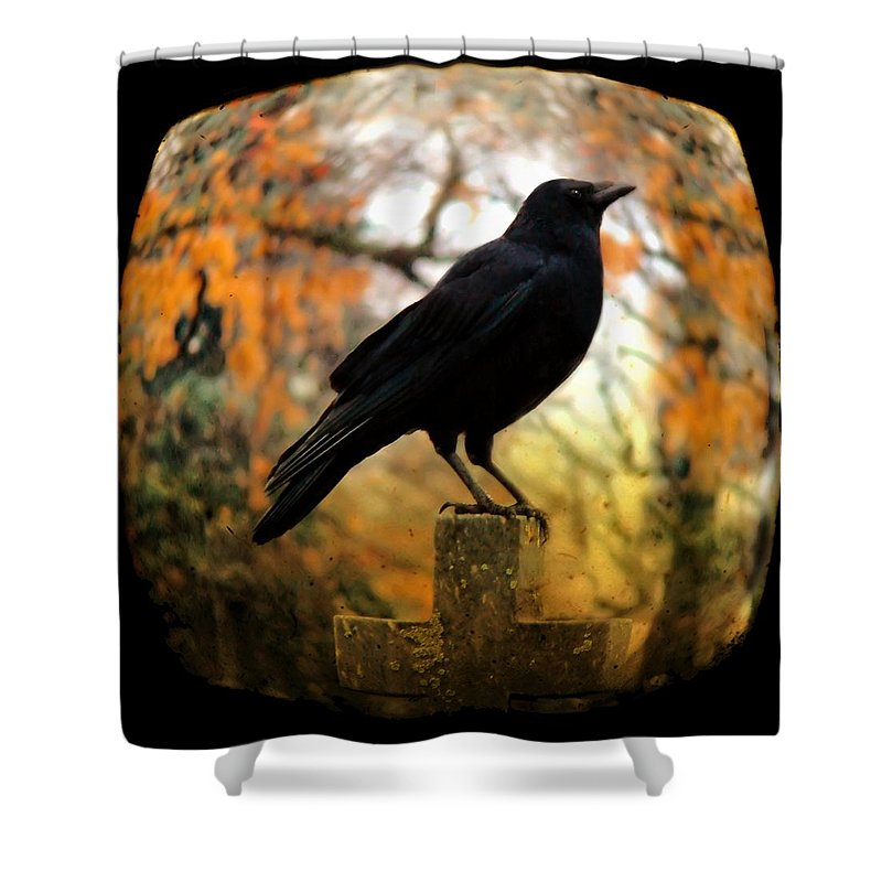 Fish Eye View Shower Curtain featuring the photograph Gothic Fish Eye by Gothicrow Images