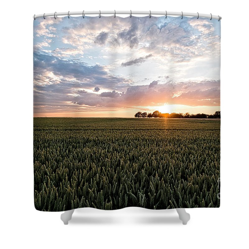 Sunset Grain Field Shower Curtain featuring the photograph Grain Field by Brothers Beerens