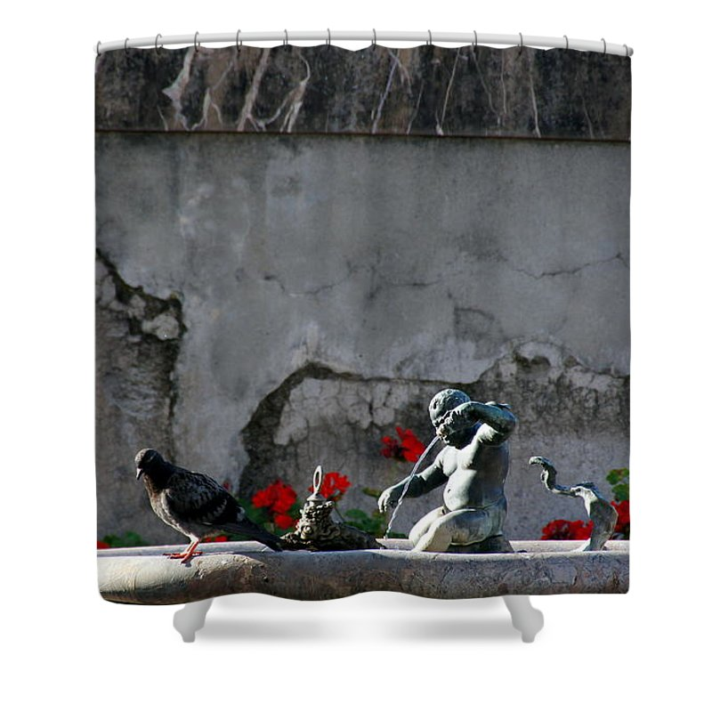 Florence Shower Curtain featuring the photograph Gray by Debi Demetrion