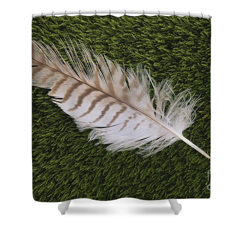 Great Horned Owl Feather Shower Curtain For Sale By Larry West