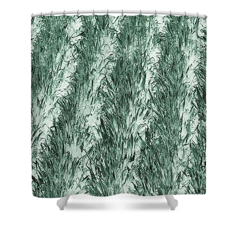 Rural America Shower Curtain featuring the photograph Green Cornfield by Dan Sproul