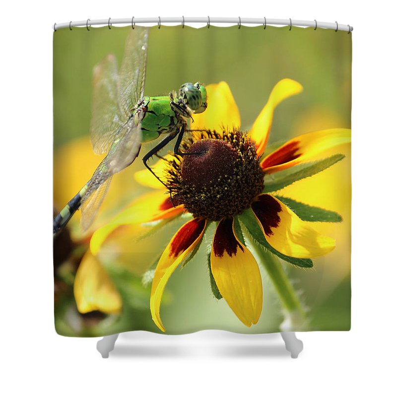 Dragonfly Shower Curtain featuring the photograph Green Dragonfly by Karen Beasley