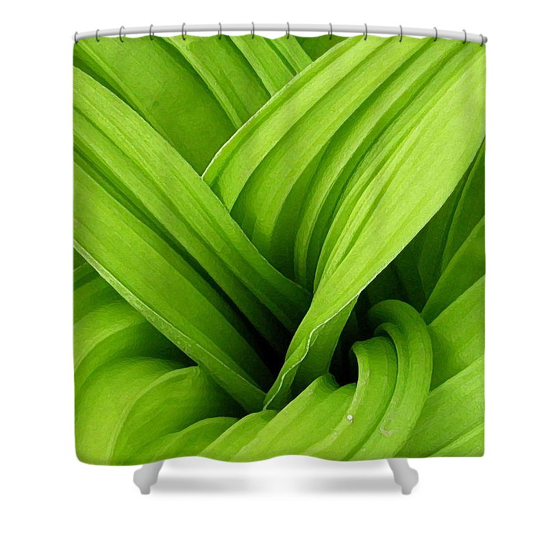 Plants Shower Curtain featuring the photograph Green Folds by Karol Livote