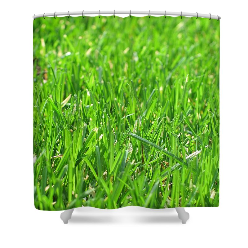 Grass Shower Curtain featuring the photograph Green Grass by FL collection