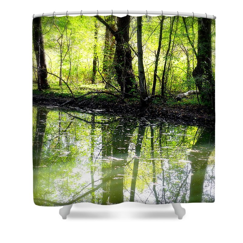 Water Shower Curtain featuring the photograph Green Shadows by Valentino Visentini