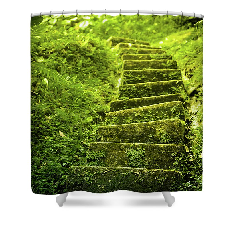 Tropical Rainforest Shower Curtain featuring the photograph Green Stair by Pixalot