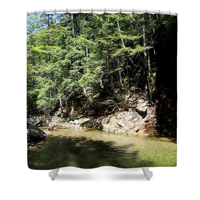 Green Water Shower Curtain featuring the photograph Green Waters by Christiane Schulze Art And Photography
