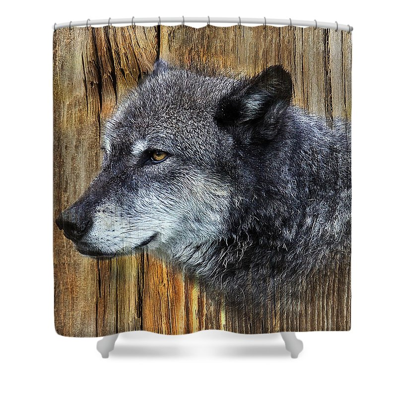 Wolf Art Shower Curtain featuring the photograph Grey Wolf On Wood by Steve McKinzie