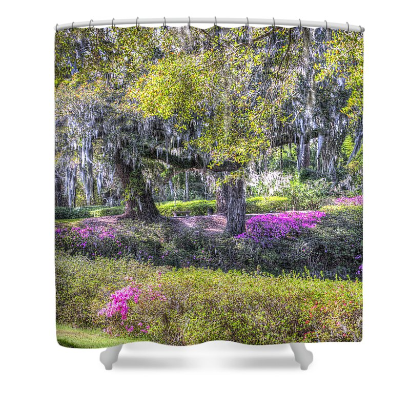 Azalea Shower Curtain featuring the photograph Grounds Of Middleton by Dale Powell