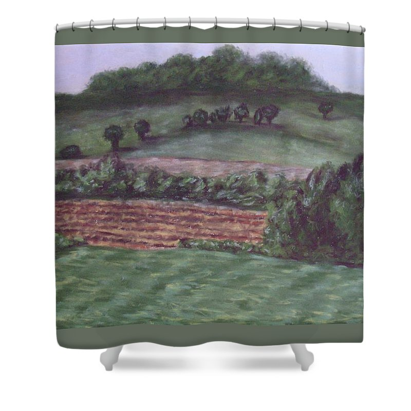 Pastel Shower Curtain featuring the pastel Guardians Of Hanover by Joann Renner